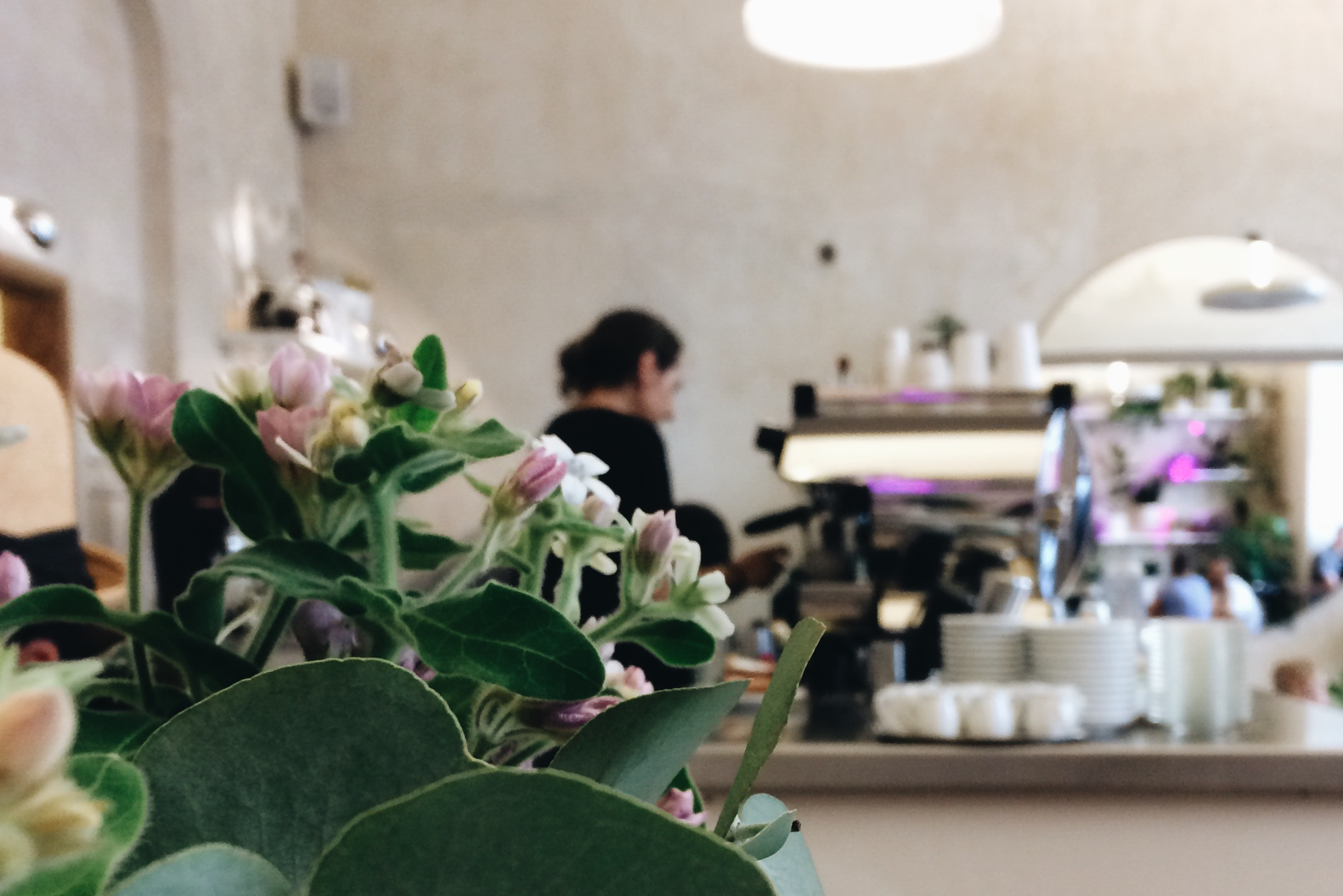 URBAN CAFE | Prague Coffee Guide